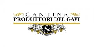 logo scheda hdgolf produttori del gavi